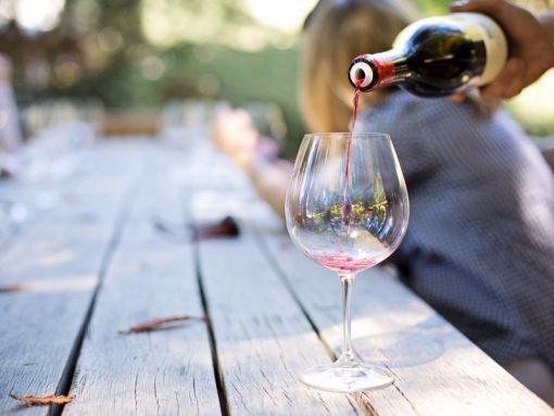 degustazione vini paladin