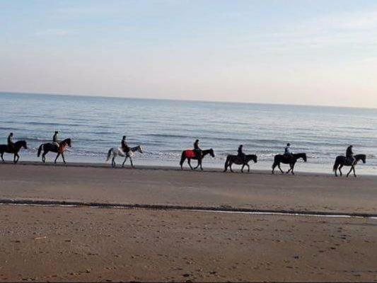 escursioni-cavallo-eraclea-jesolo