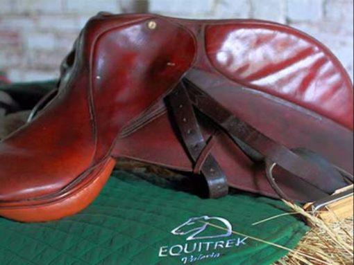 Equitrek-horse-excursion-Eraclea-Jesolo-Caorle
