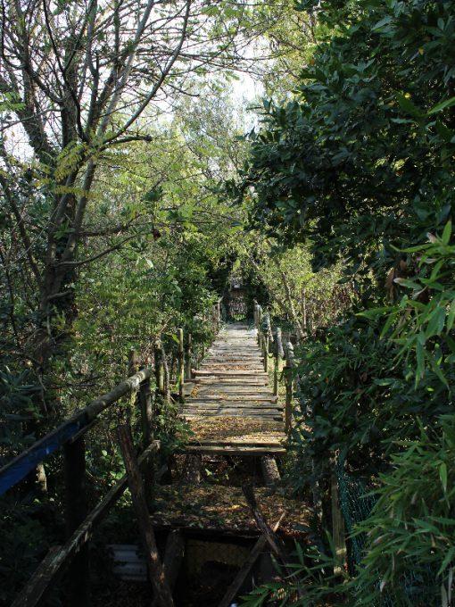 escursione-bragozzo-caorle-7