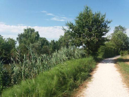 piave vecchia escursioni nei dintorni di venezia