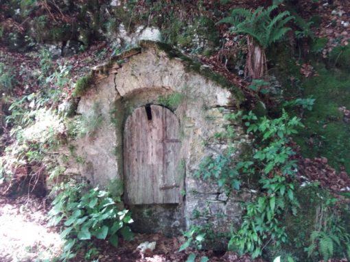 Cordellon e Monte Foral escursioni Belluno 1