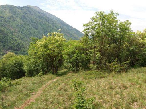 Rocchetta del Monte Miesna 3