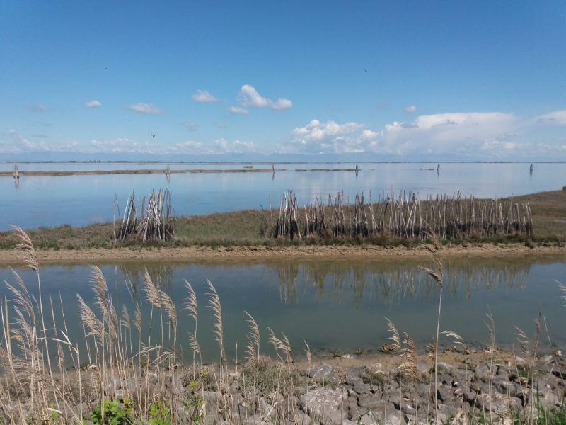 Escursioni Veneto laguna Lio Piccolo
