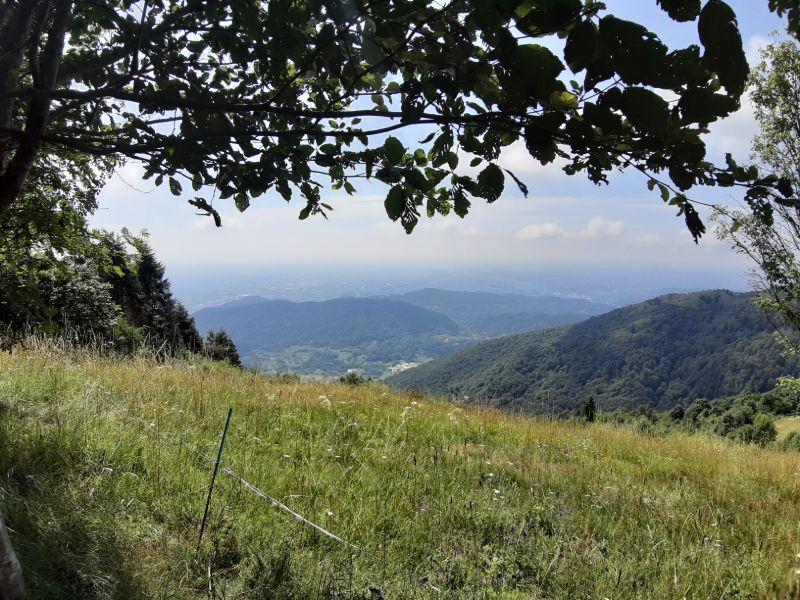 Escursioni in montagna Veneto Pian de le Femene