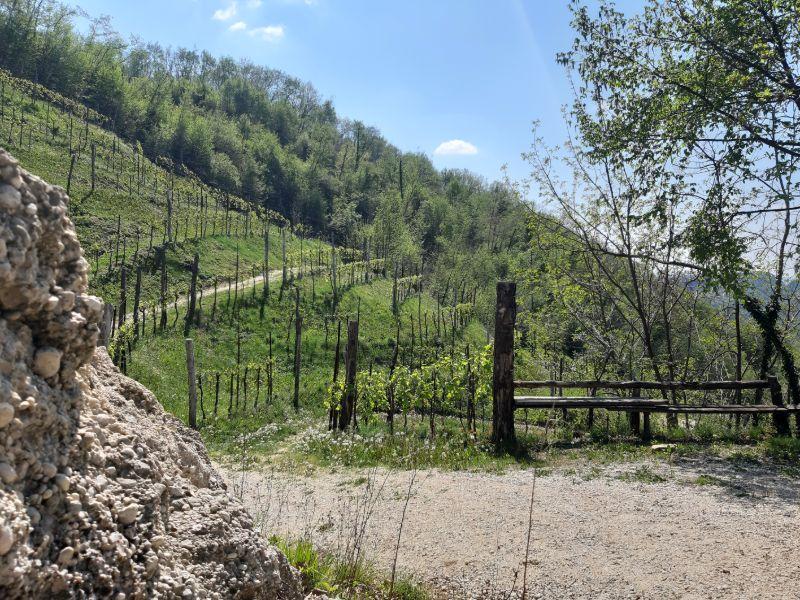 Escursioni organizzate Veneto Molinetto della Croda Refrontolo