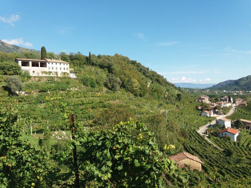 Escursioni veneto colline del Prosecco vitigni