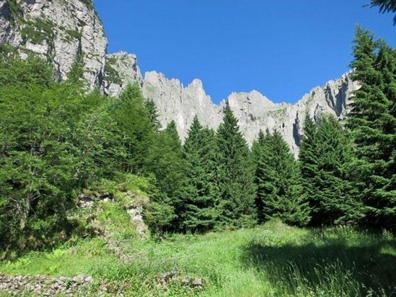 Escursioni Parco Nazionale Dolomiti Bellunesi Foresta di Cajada