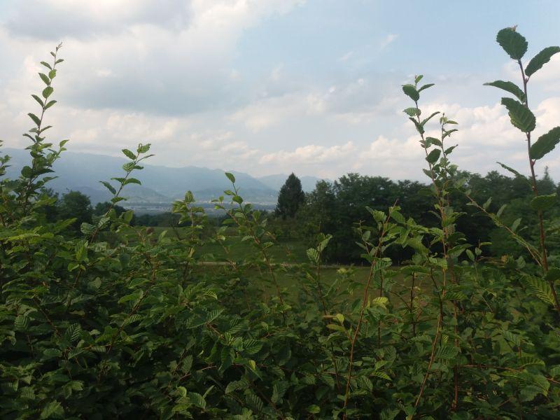 Montello passeggiate nei dintorni Treviso