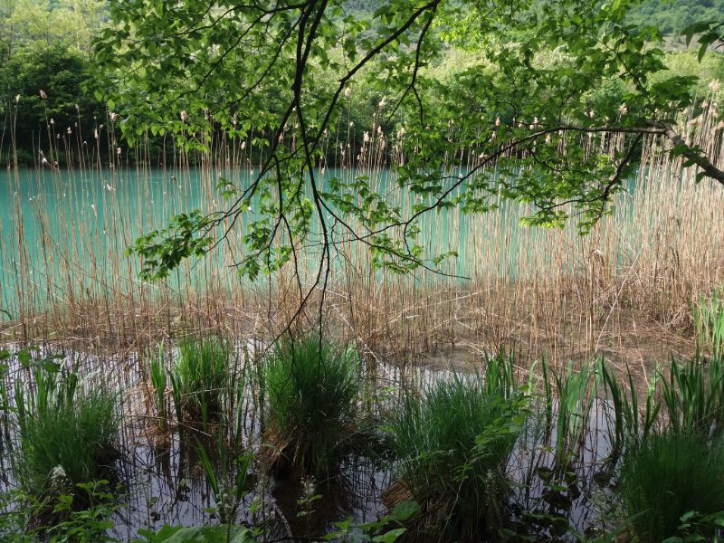 Passeggiate laghi in Veneto Lago di Negrisiola