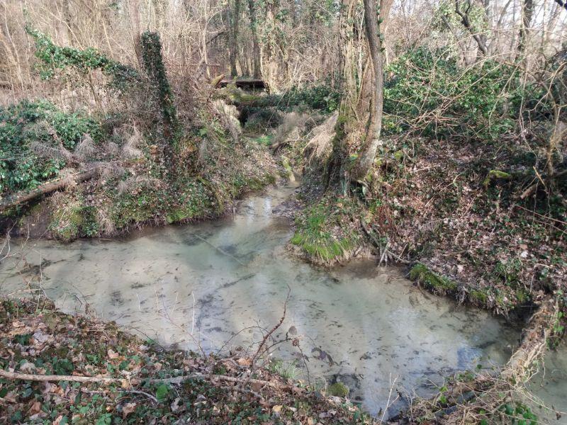 Sorgenti del Sile Parco naturale fiume Sile passeggiate Treviso 1