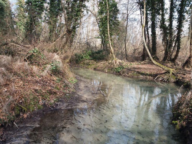 Sorgenti del Sile Parco naturale fiume Sile passeggiate Treviso