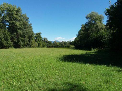 Oasi Fontane bianche cosa vedere Treviso