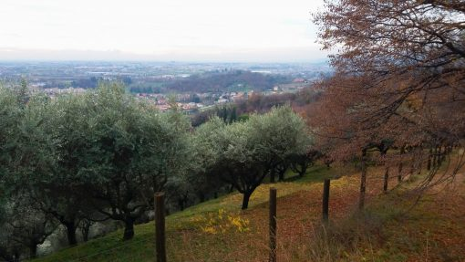 Escursioni a Mussolente