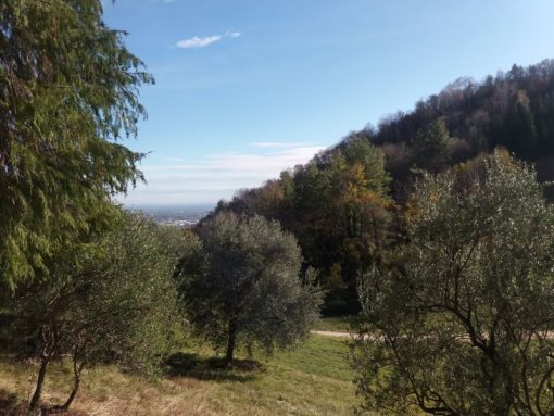 Perdonanze escursioni Vittorio Veneto Tarzo