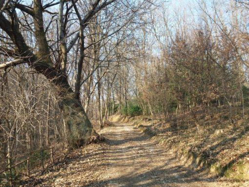 La Valle delle Tre Fonti escursione Montello