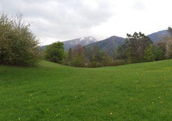 Escursioni Valbelluna Melere