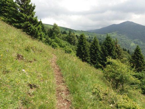 Escursioni Segusino Milies Monte Doc Zogo