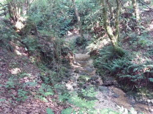 Escursione Budoia Gor Colli di Santa Lucia Polcenigo