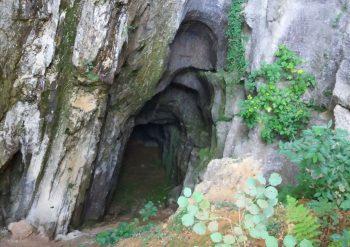 Escursioni Tour Colline del Prosecco Busa Scalona