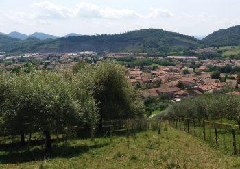 Escursioni tour Possagno