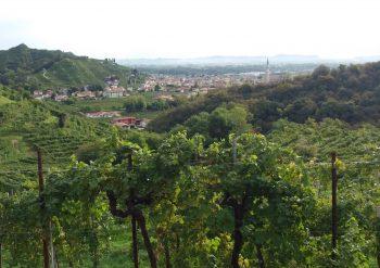 Col San Martino Escursioni tour visite guidate Colline del Prosecco
